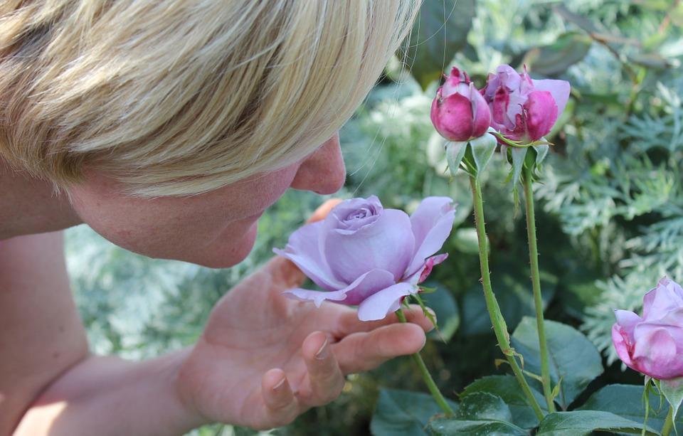 přičichnutí ke květině